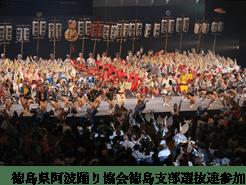徳島県阿波踊り協会徳島支部選抜連参加
