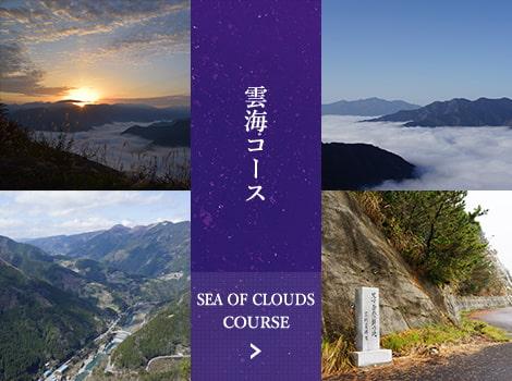雲海コース