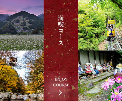 Oboke-Iya and Oku-Iya full immersion tour