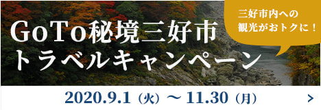 GoTo秘境三好市トラベルキャンペーン2020.7.1(水)~8.31(月)三好市内への観光がおトクに!